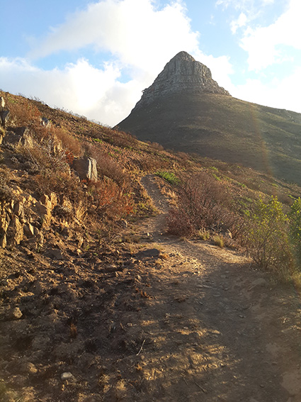 Dusty mountain trail leading to Lion's Head